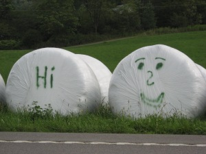 "MarshmallowSays""Hi""_Pennsylvania2012"